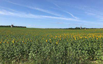 6 juillet : Etape 8 : Primelles – Sainte Fauste